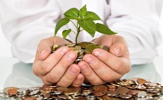 Cyrus Balarak Investment Services | See!